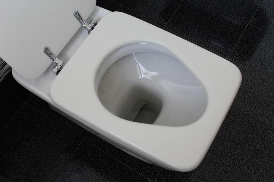 COSAS QUE NUNCA DEBES TIRAR POR EL WC
